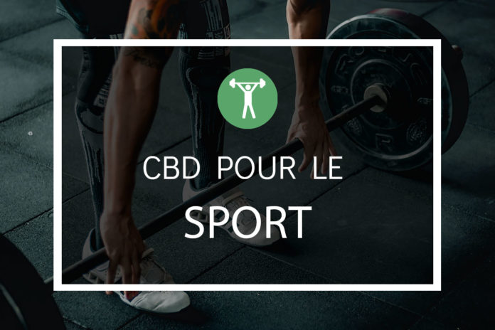Le cbd et le sport