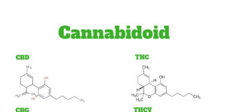 Liste des cannabinoide